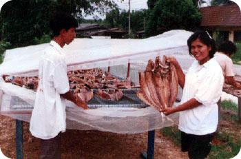 แปรรูปอาหารทะเล (ปลาเค็ม)