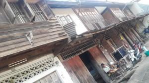 Cilo-Trang-1216-9